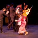 reflejo_flamenco_01