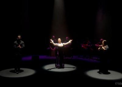 Reflejo Flamenco