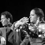 Espectáculo Flamenco Dalearte