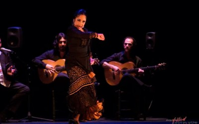 """Flamenco"" Festival de Jerez 2014"