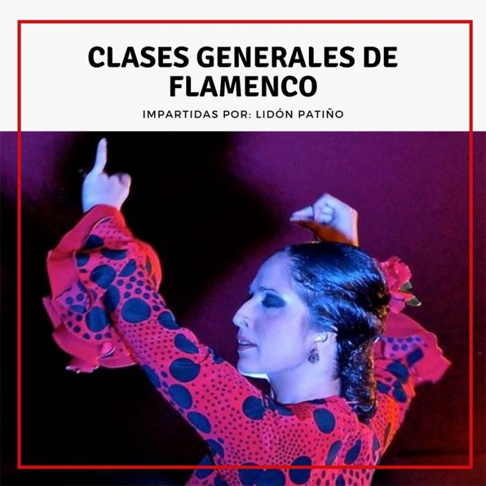 Clases generales de Flamenco