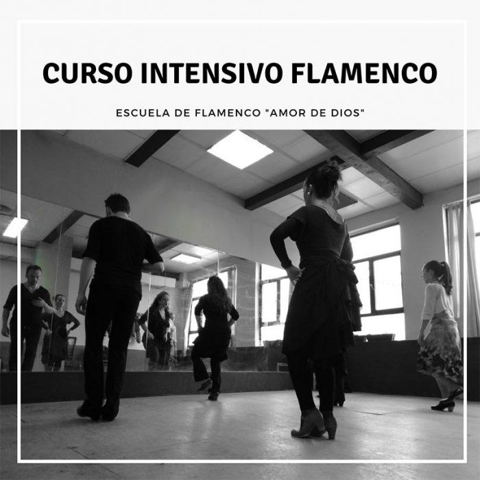 Curso intensivo de Flamenco